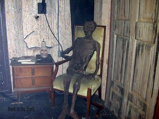 swskeletonchair