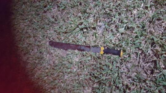 fl-palm-deputy-shooting-machete-20151008-001